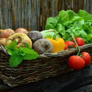 ¿Cuáles son los mejores alimentos para adelgazar?