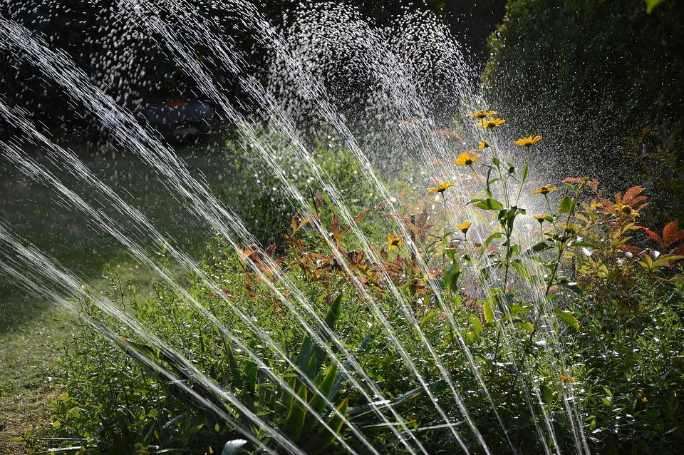 Los mejores artículos y sistemas de riego para optimizar el uso de tu jardín
